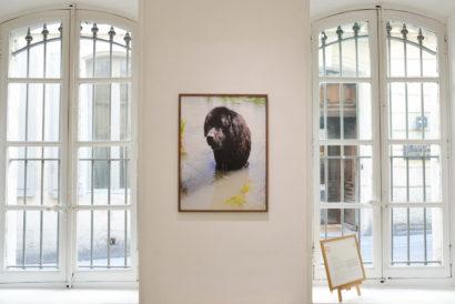 11 - FLAIR Galerie