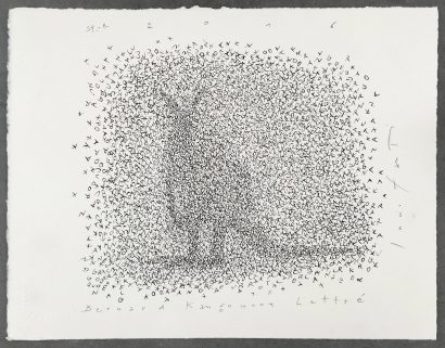 Bernard, kangourou lettré. 2016 - Lucio Fanti - FLAIR Galerie