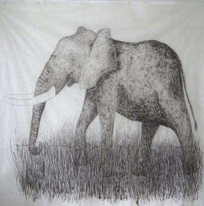 Eléphant gris. 2015 - Caroline Desnoëttes - FLAIR Galerie
