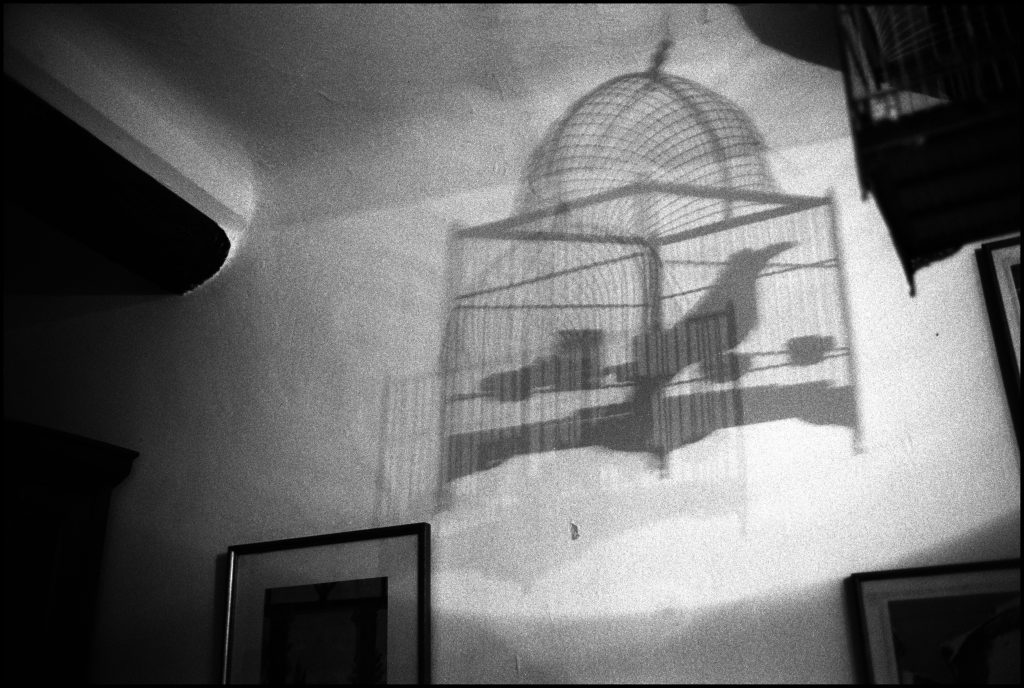 La cage, Manosque. 2003 - Nicolas Guilbert