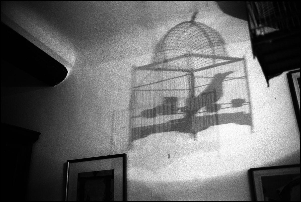 La cage, Manosque. 2003 - Nicolas Guilbert - FLAIR Galerie