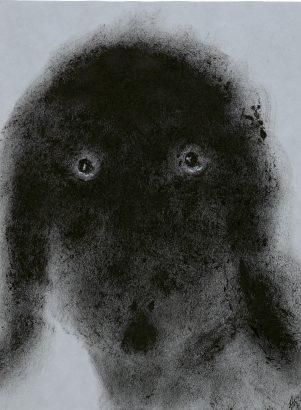 Les yeux du chien. 2016 - Anouk Grinberg - FLAIR Galerie