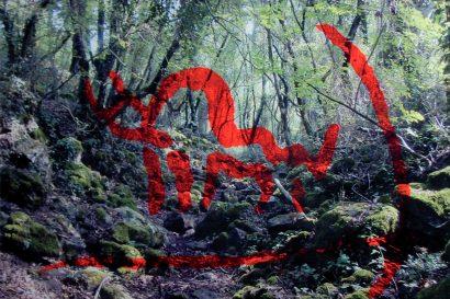 Nella selva antica 06. 2014 - Salvatore Puglia - FLAIR Galerie