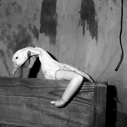 One Arm Goose. 2004 - Roger Ballen - FLAIR Galerie