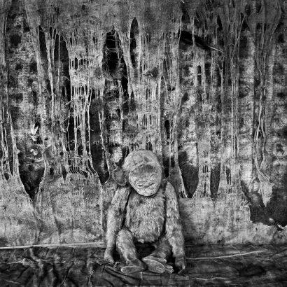 pathos. 2005 - Roger Ballen - FLAIR Galerie