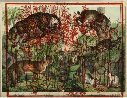Raubtiere 05. 2018 - SALVATORE PUGLIA - FLAIR Galerie