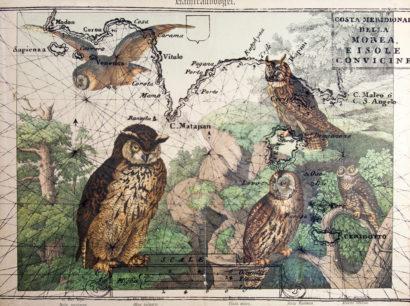 Raubvögel 01. 2018 - SALVATORE PUGLIA - FLAIR Galerie