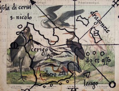 Raubvögel 05. 2018 - SALVATORE PUGLIA - FLAIR Galerie